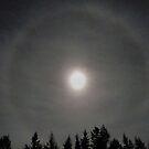 'Ring Around the Moon' by Scott Bricker