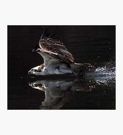 Mercy! Photographic Print