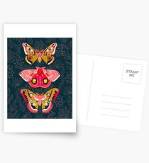 Lepidoptery No. 4 by Andrea Lauren Postcards