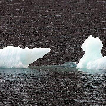 Ice Bear by JohnDalkin