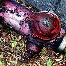 fire hydrant 044 - New York by ben leiman