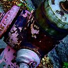 Fire Hydrant 056 - New York by ben leiman