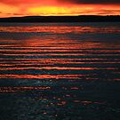 rippling light. sunrise - tasmania by tim buckley | bodhiimages
