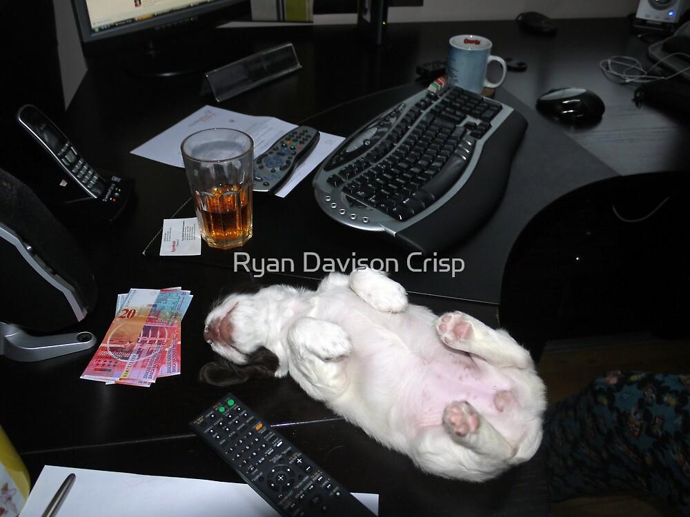 My New Paper Weight by Ryan Davison Crisp