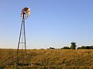 Kansas Country by Carla Wick/Jandelle Petters