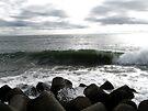 Harbor Wave by Andrew Simoni