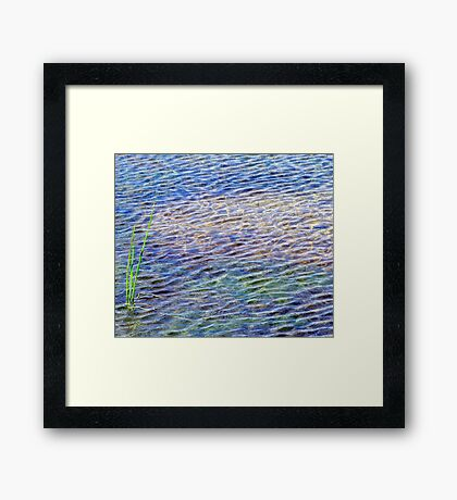reeds and ripples Framed Print