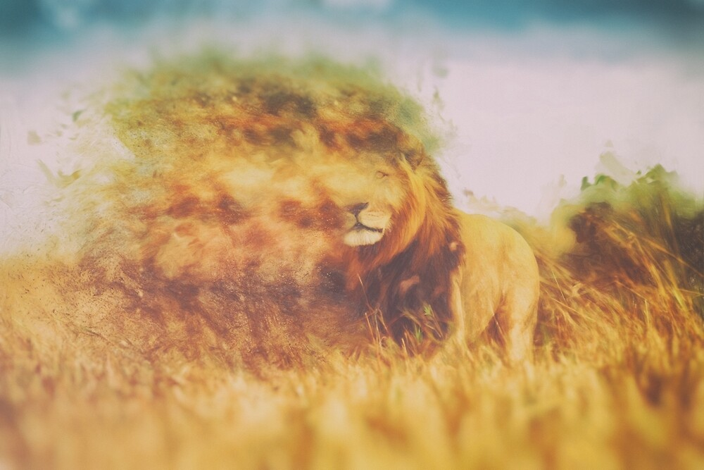 Cecil the Lion by Joey Di Nardo