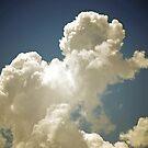 Poodle Powered Cloud by Carol Barona