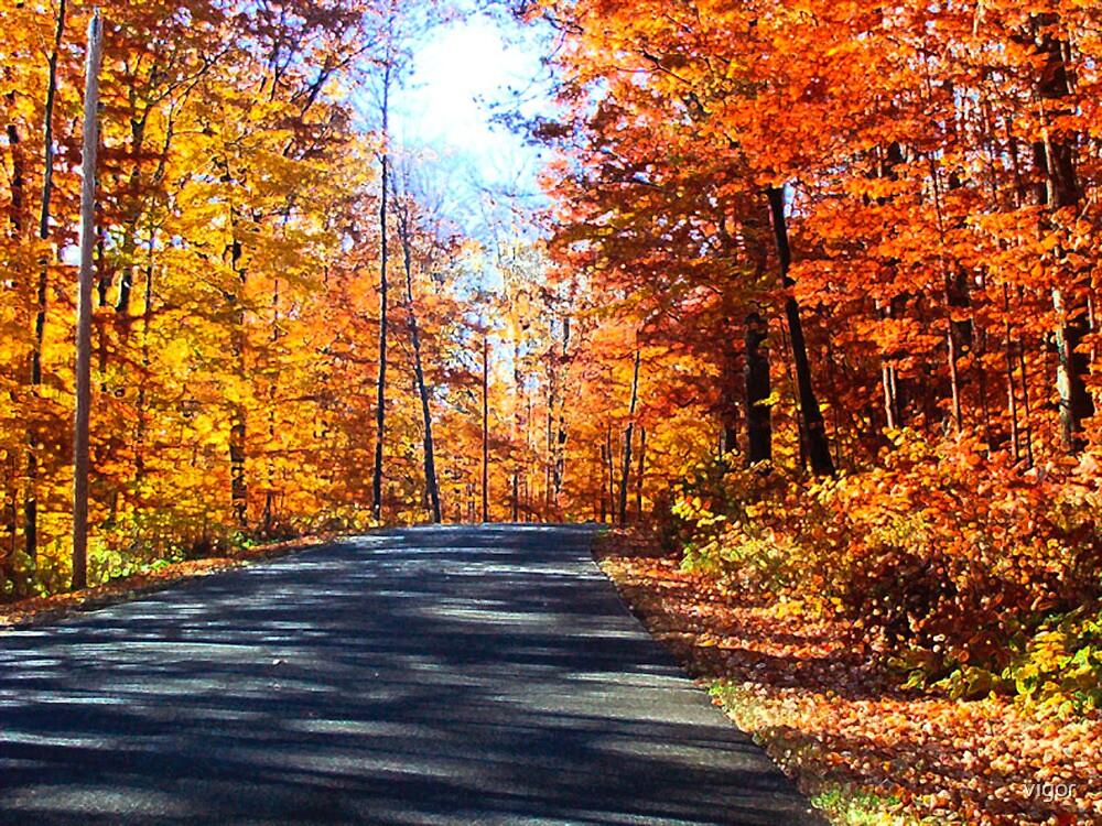 An October Drive by vigor