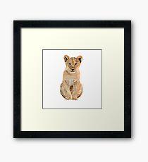 Baby lion illustration  Framed Print