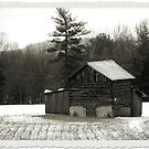 Pilgram's Snow by InvictusPhotog