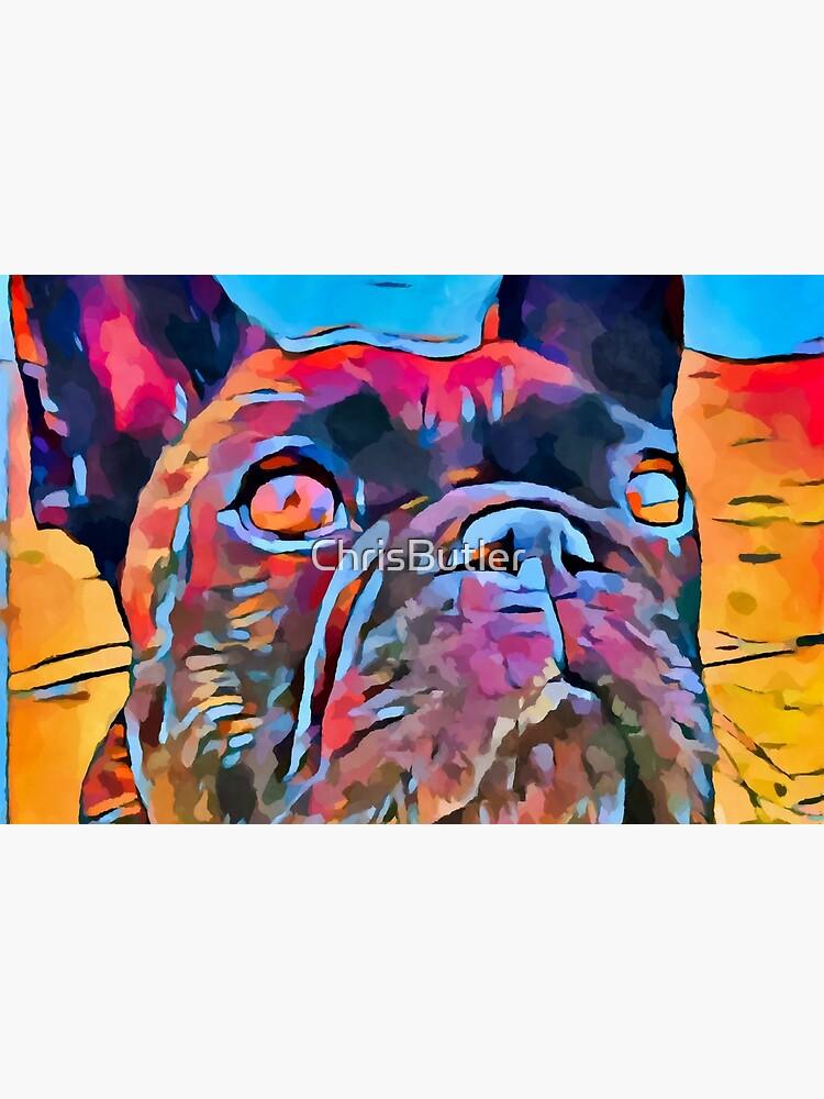 French Bulldog 6 by ChrisButler