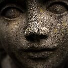 The Statue by Mike Topley
