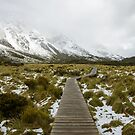 Curvy hanging pathway protects mountain ecosystem at Hooker Valley Track by Sergey Orlov