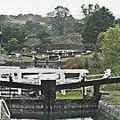 Cane Hill Locks 30 Colour Selective by davesphotographics