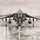 Harrier in the mist by L K Southward