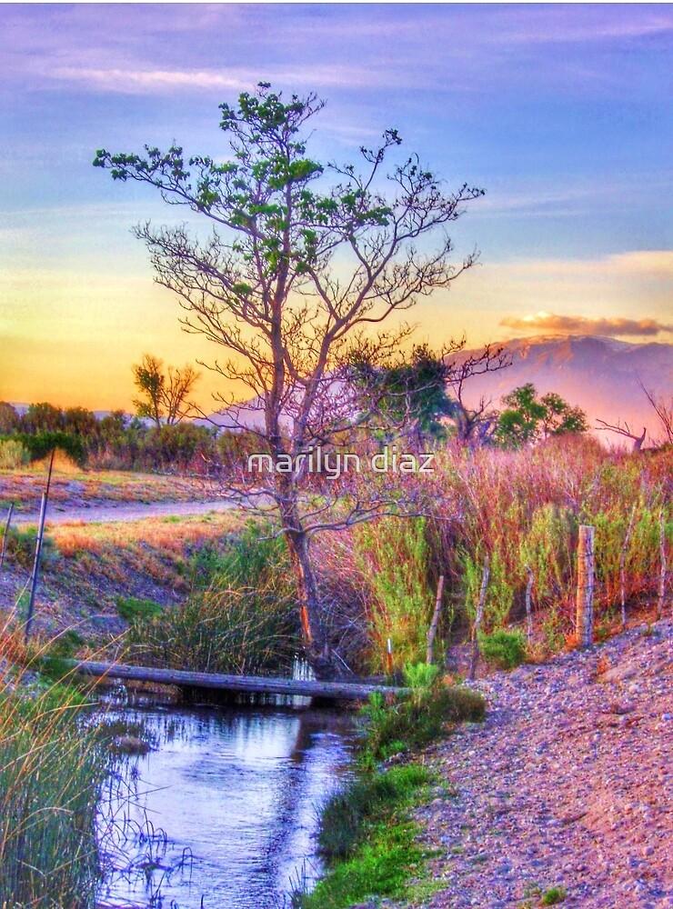 As The Sun Sets by marilyn diaz