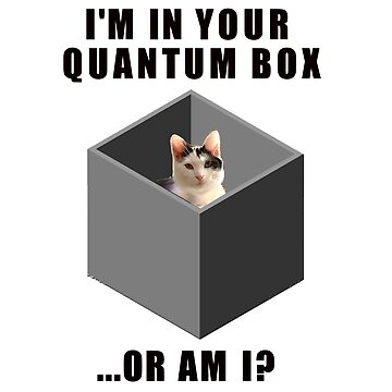 Quantum cat by bmgdesigns