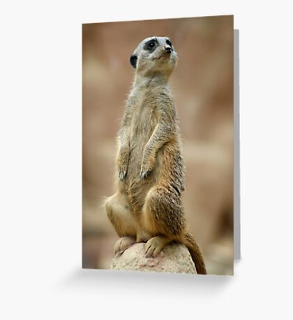 On Guard! ~ Simplez! Greeting Card