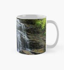 Soco Falls Classic Mug