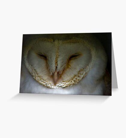Barn Owl #1 Greeting Card