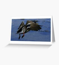 Into The Twilight Greeting Card