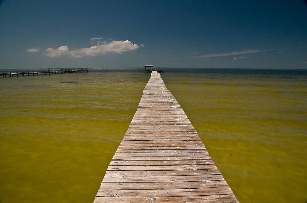 Pine Island, Florida by Quasebart