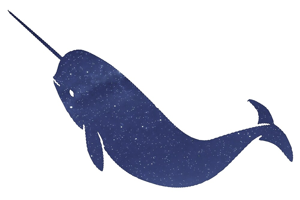Narwhal - Stars by paperbouquet