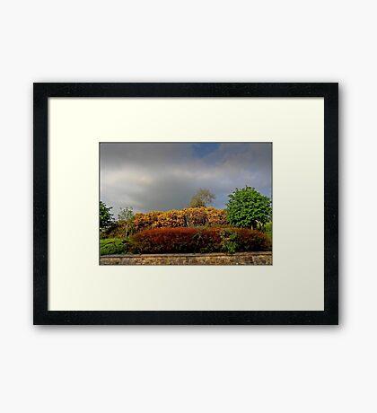 Autumnal Hedgerow Framed Print