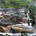 Mannum Waterfalls by Dave  Hartley
