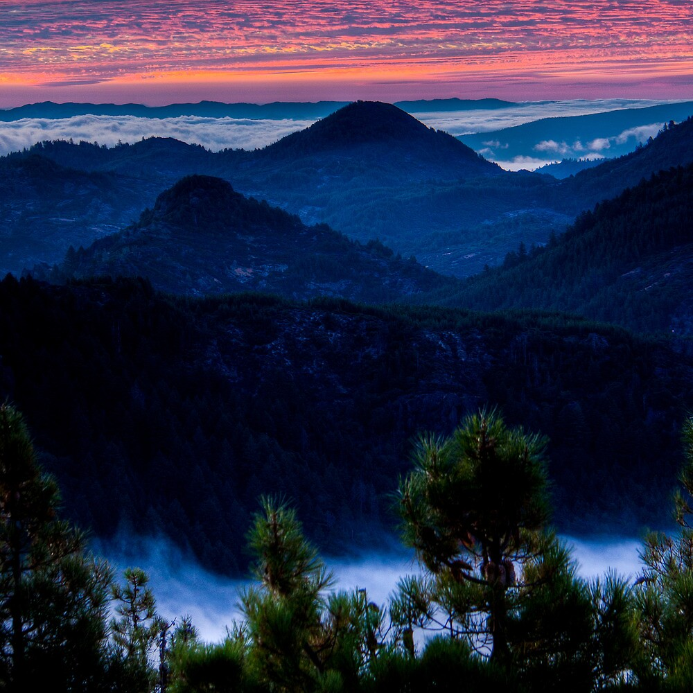Waiting for Sunrise in the Mayacamas by Don Claybrook