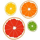 Citrus Fruit by Hannah Kaplan