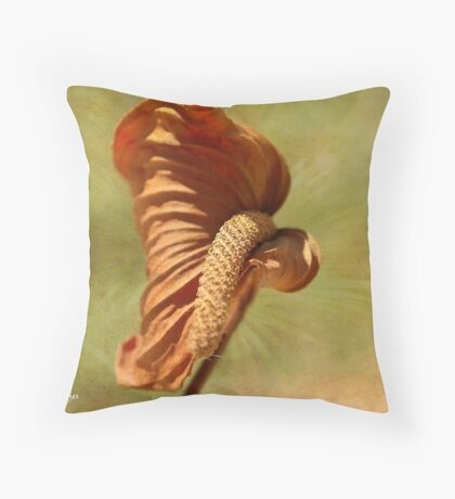 TIME CHANGES EVERYTHING - TYD VERANDER ALLES Throw Pillow