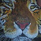 close up of a tiger  by cherie  vize