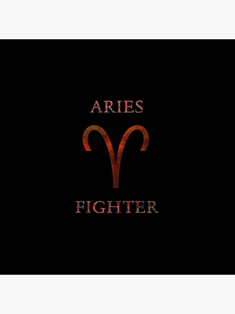 ARIES FIGHTER von wannabe311