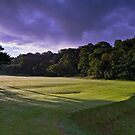 listowel golf club - 021 by Paul Woods