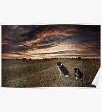 Harvest time Walk with the Dogs Poster