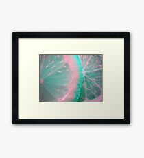 Colour Fruit. Macro. Framed Print