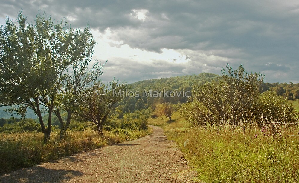 The Road by Milos Markovic
