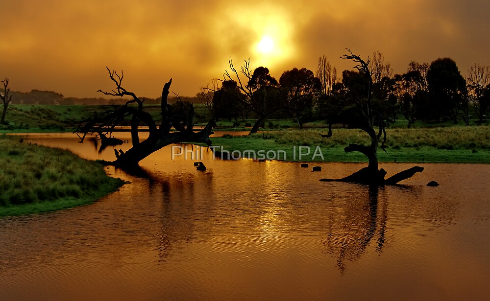 """Copper Dawn"" by Phil Thomson IPA"