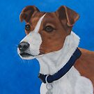 Jack Russell Terrier Portrait by NyreeMason