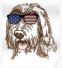 Póster Wirehaired Pointing Griffon in glasses