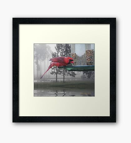 Would You Like Some Lunch? Framed Print