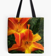 Sunshine day dreams Tote Bag