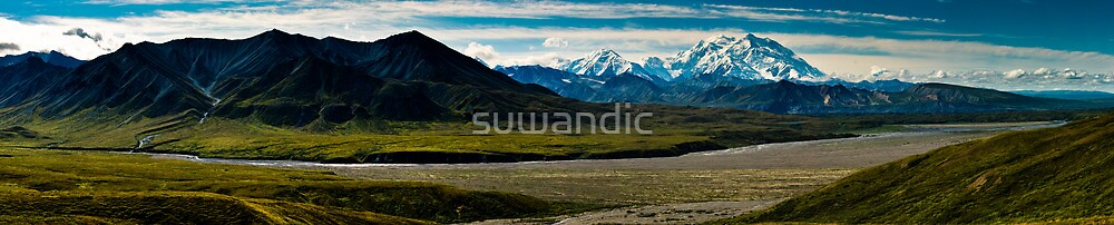 Denali Panorama by suwandic