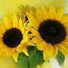 Sonnenblumen von Morag Bates
