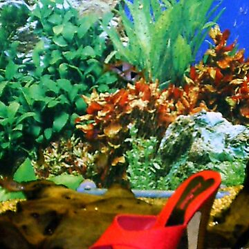21st Century Cinderella- FishyShoe by blueskies