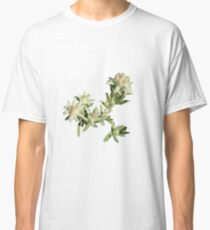 Europe, flower, Edelweiss, photography, BebiCervin Classic T-Shirt