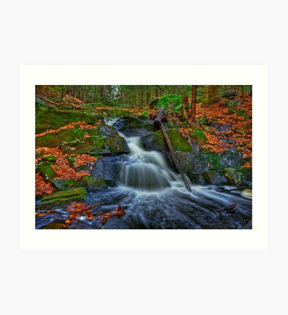 Fresh Water Art Print